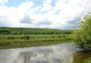 Рыбалка на Дону в Липецкой области