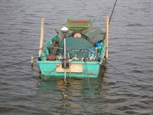 Без рыбы не уплыву!