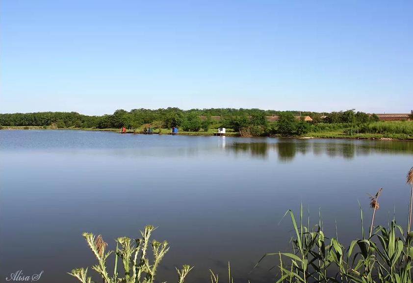 Отдых с рыбалкой в «Пластунах»