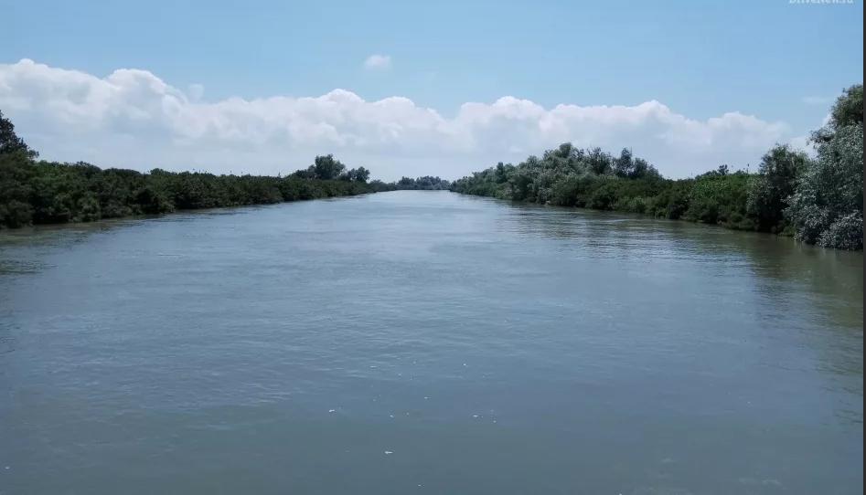 Темрюкский район, низовья реки Кубань