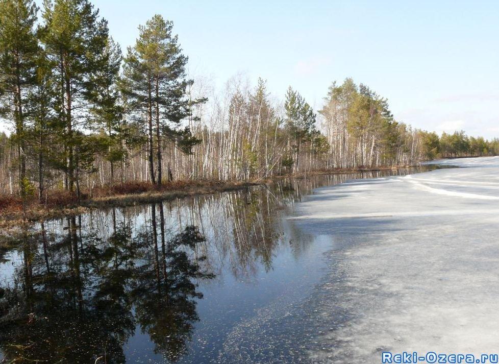Озеро Белое - Рыбалка в Пермском крае