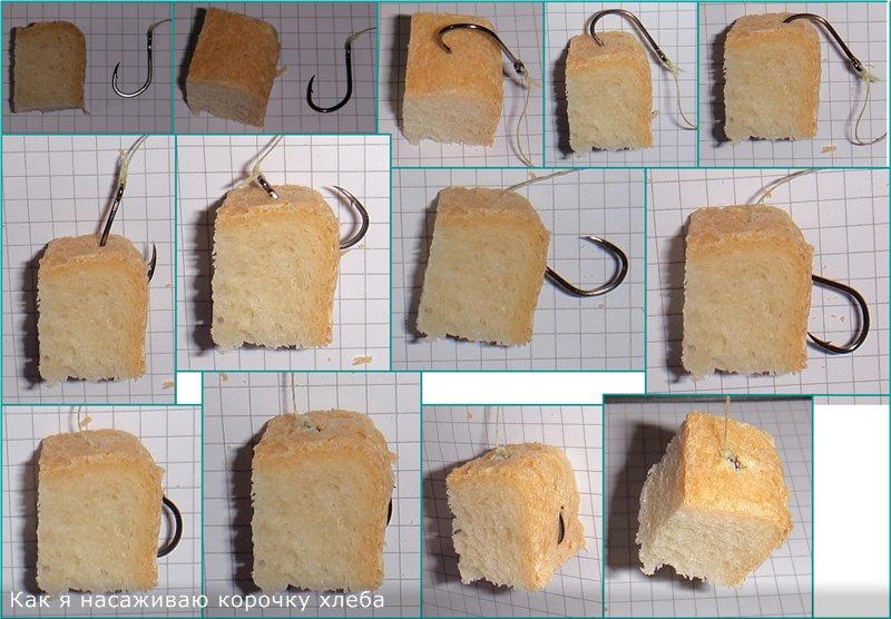 Ловля голавля на корку хлеба