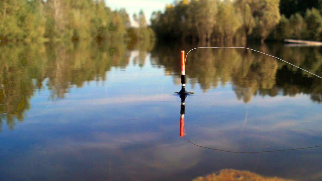 Оснастка поплавочной снасти при ловле голавля