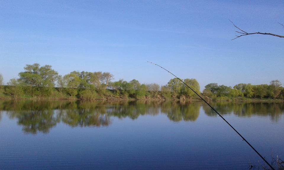 Отчет о рыбалка в шилово